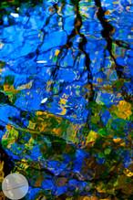 Reflections-8.jpg