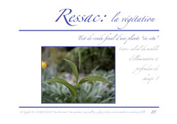 Ressac-dossier graphique_Page_18