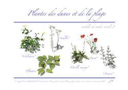 Ressac-dossier graphique_Page_29