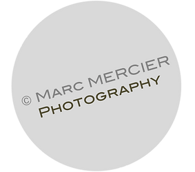 logo - Watermark Marc Mercier Photography