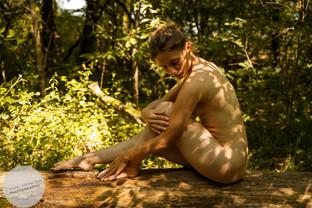 Summer Forest-22.jpg
