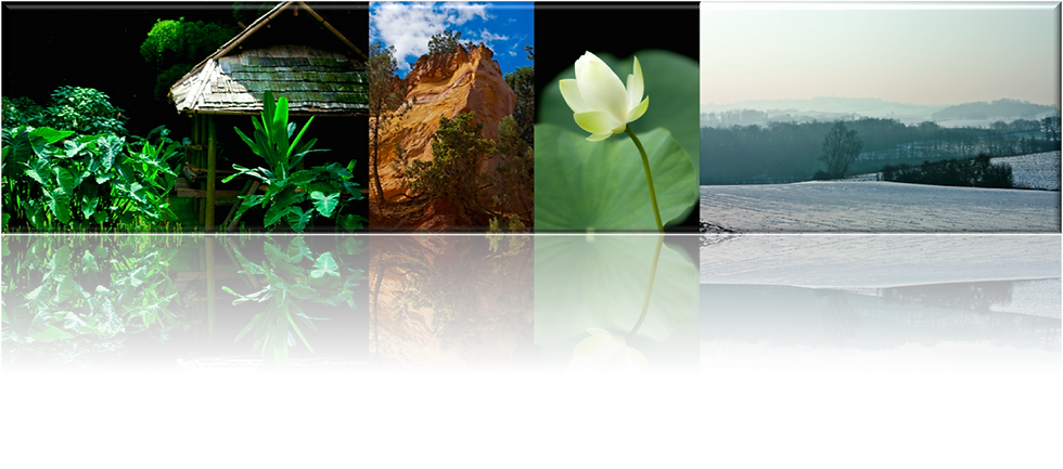 paysage - landscape portfolio