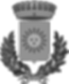 2000px-CoA_Comune_di_Solofra_grey.png