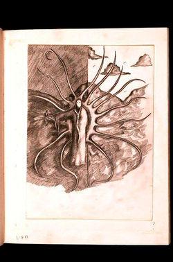 drawings journal entries 53