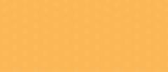 bandeau jaune_Plan de travail 1 copie.pn
