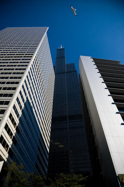 Sears tower between buildings.png