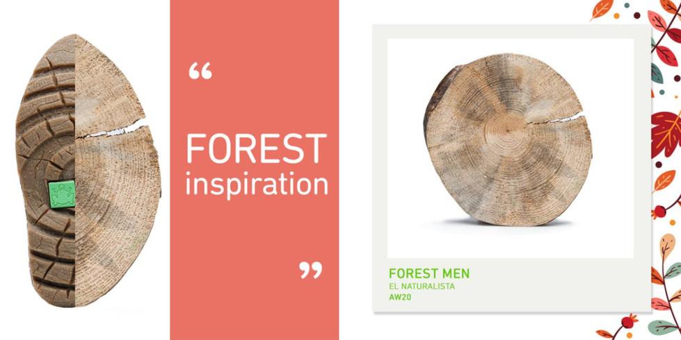 El naturalista forest inspiration