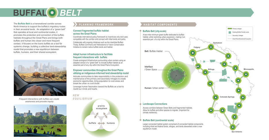 The Bison Belt Page 2