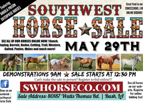 HORSE SALE - MAY 29TH!!