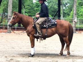 Rythms Ruby Dew - Reined Cow Horse