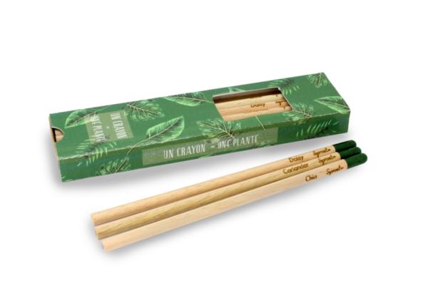 Coffret 6 crayons à graines