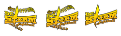 dc-storm.png