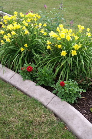 yard-and-flower-garden-1.png