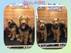 Bella & Hope
