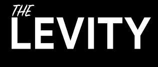 THE LEVITY LOGO2.jpg