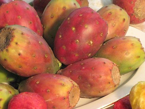 prickly pear 1.JPG