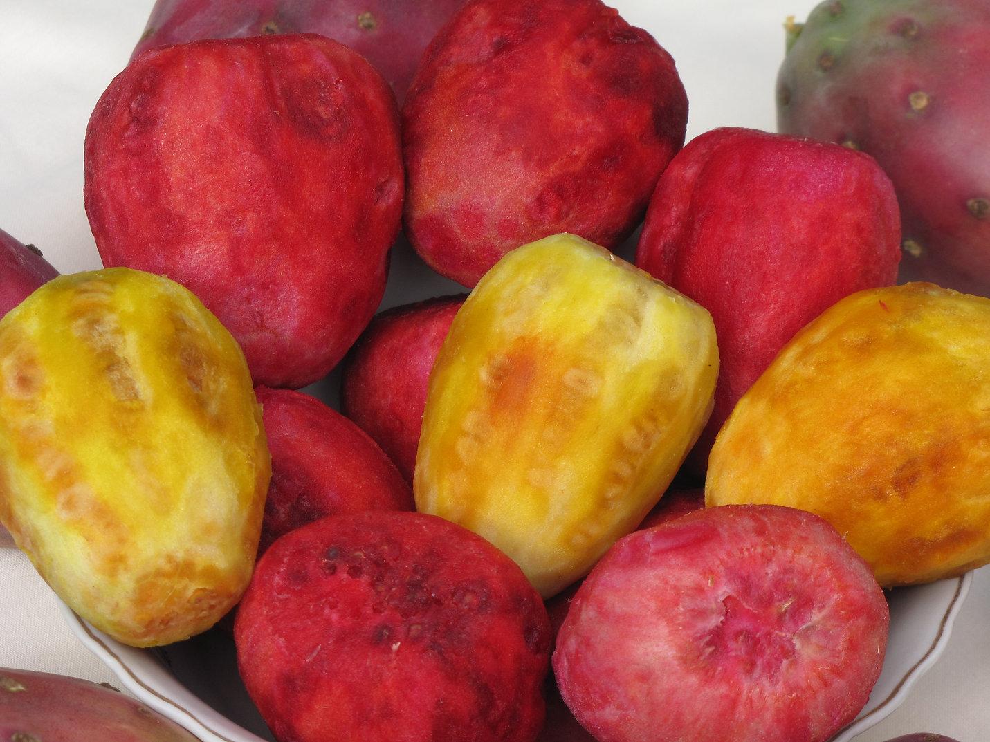 prickly pear fruit.JPG