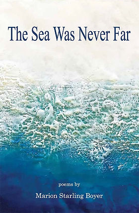 Book%20Cover%20The%20Sea%20Was%20Never%2