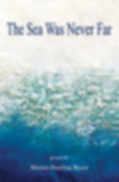Book Cover The Sea Was Never Far.jpg