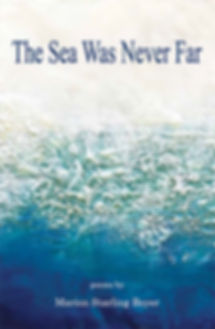 Book Cover The Sea Was Never Far.jpg