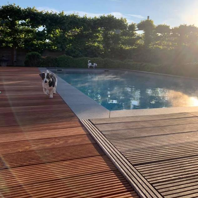 Aanleg zwembad terras