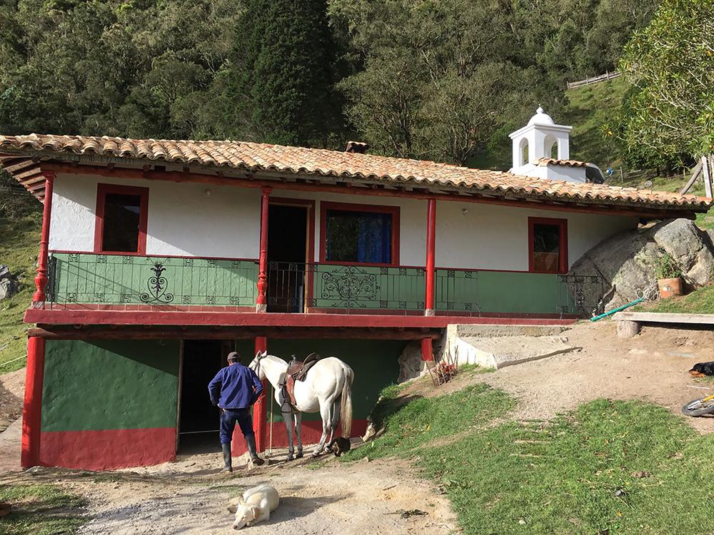 Bachue caballo casa