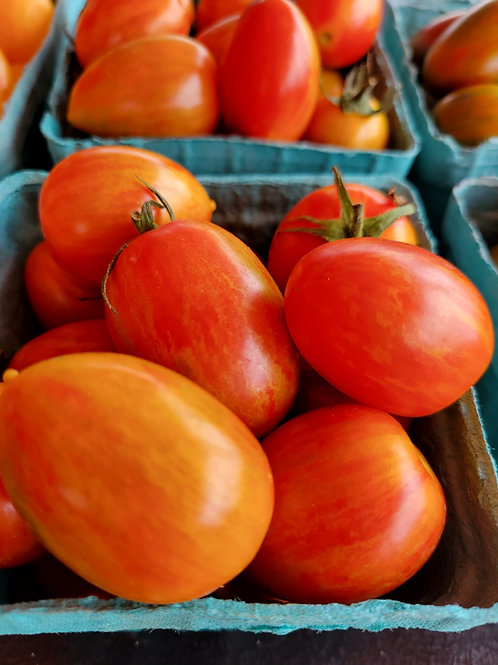 Red Torch Tomato
