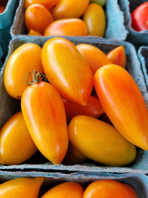 Long Blush Tomato