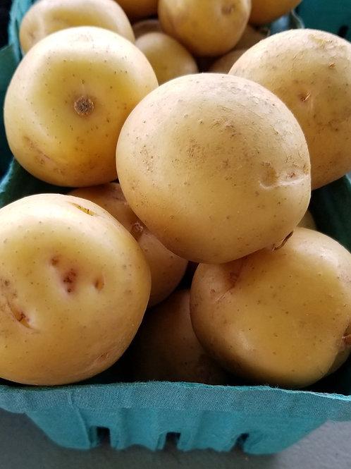 Baby Yukon Gold Potato (Pint)