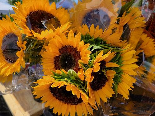 Fresh Cut Sunflowers Boquet