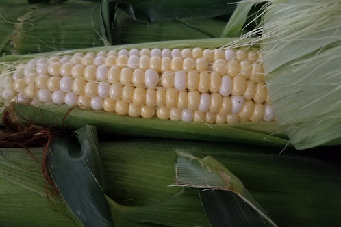Sweet Corn (3 Ears)