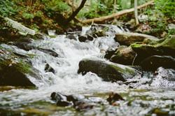 stream-river-sonja-langford