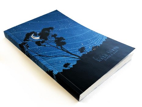 HALF-STATE ART BOOK