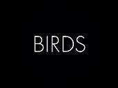 Logo Birds