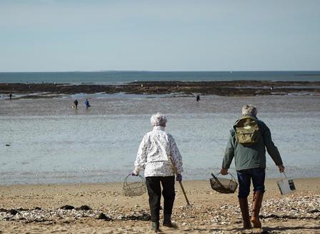 La pêche à pied à Damgan dans le Morbihan
