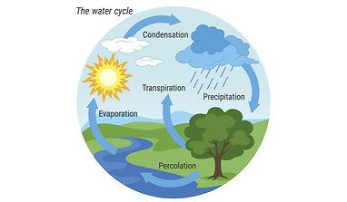 water cycle image.jpg