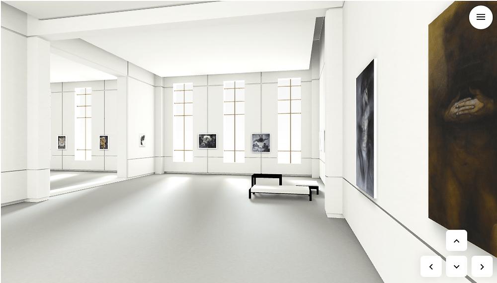 Zaaman's Virtual Gallery Experience