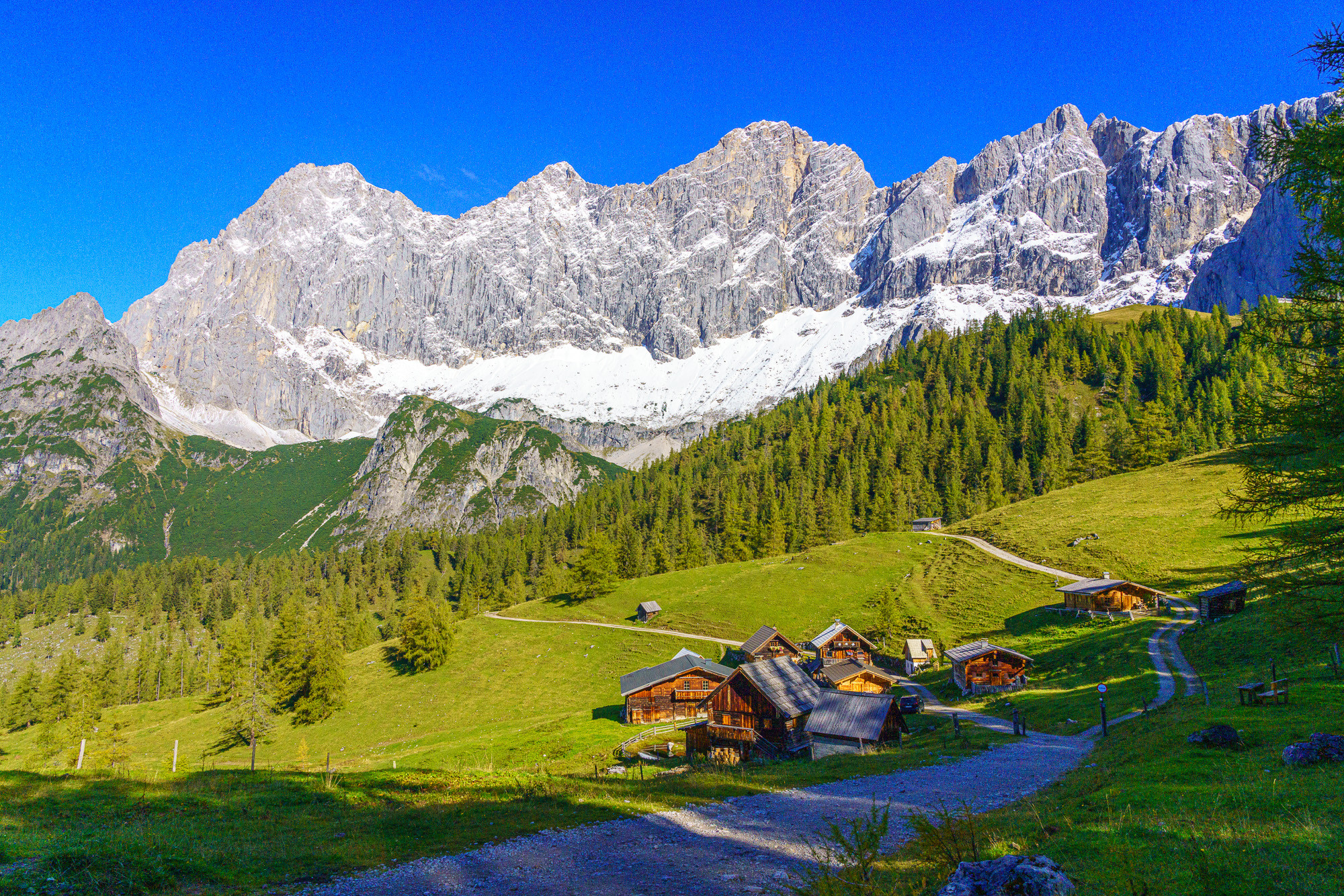 De Veelzijdige Dachstein
