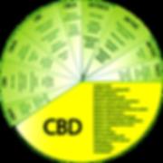 CBD and illnesses