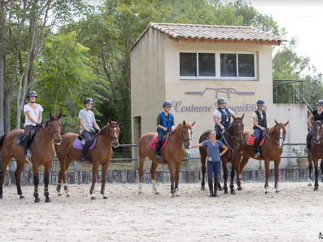 Sport Etude Equitation à la HDN Academy : quel avenir après le baccalauréat ?