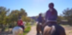 equitation etude en academy.png