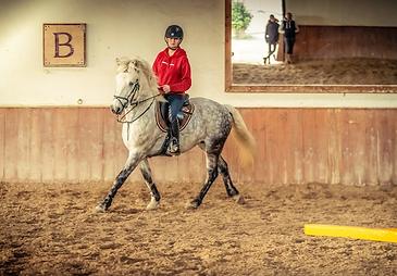 equitation en sport etudes.png
