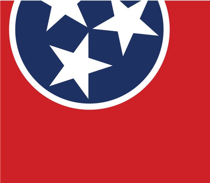 TNflagpartial.jpg