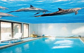 swimming pools with print on the stretch ceiling