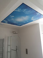 art print on the ceiling stretch ceilings