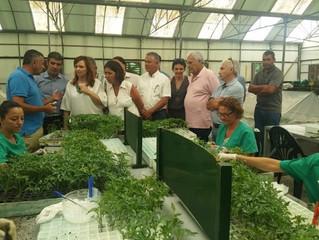 La Aldea muestra su gestión pionera en el tratamiento de residuos vegetales