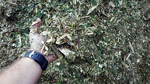 trituración residuos organicos