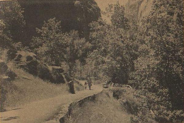 Trail25.jpg