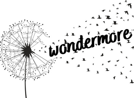 a daily dose of wonder