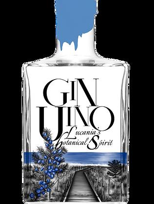 Gin GinUino cl 50